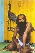 Rathinagiri Bala Murugan Adimai